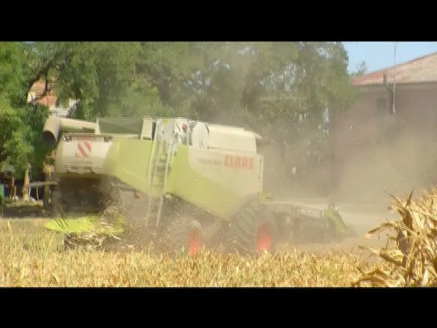 Portomaggiore, l'emergenza siccità
