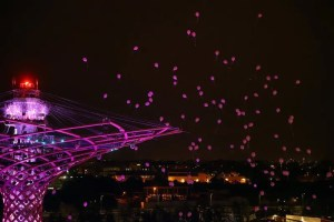 02_10_2015_10_22_19_Italy_Breast_Cancer_Awareness