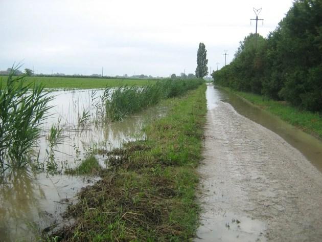 """Coldiretti Emilia-Romagna: """"La pioggia salva la campagna"""""""