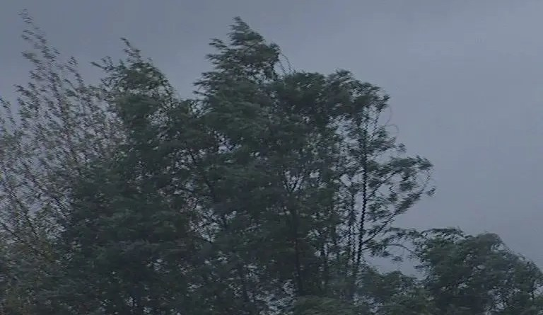 pioggia vento maltempo