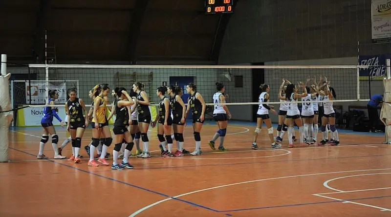 foto da facebook https://www.facebook.com/LemenVolley/photos/a.1955229388065352.1073741837.1937519189836372/1955229688065322/?type=3&theater