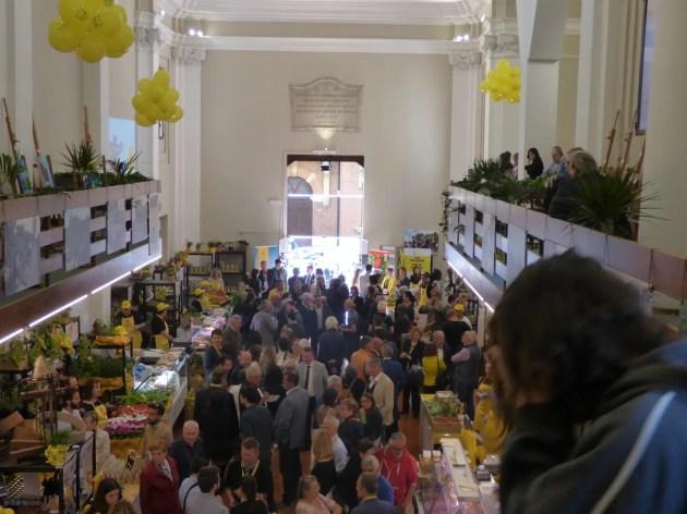 Campagna Amica: il mercatino nell'ex chiesa di S.Matteo del Soccorso a Ferrara – VIDEO