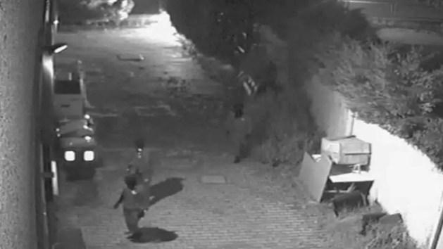 Banda della Ruspa, furto a Telestense: ecco le immagini dei ladri – VIDEO