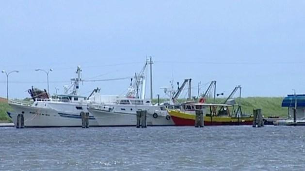 Ambiente, mare senza plastica: il ruolo dei pescatori – VIDEO