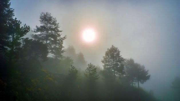 Correlazione Covid-19, meteo e qualità dell'aria. Lo studio del climatologo Fazzini di Unife