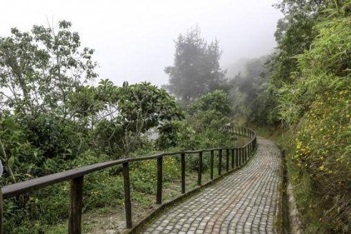 Está ubicado al noroccidente de Quito y es uno de los lugares con mayor riqueza vegetal y animal del planeta.