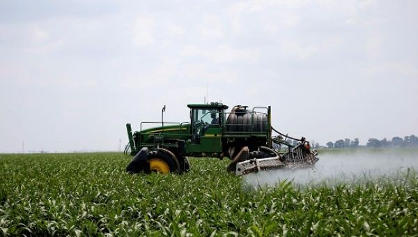 A worker uses a tractor to spray a field of crops during a crop-eating armyworm invasion at a farm near Settlers in Limpopo province, South Africa.