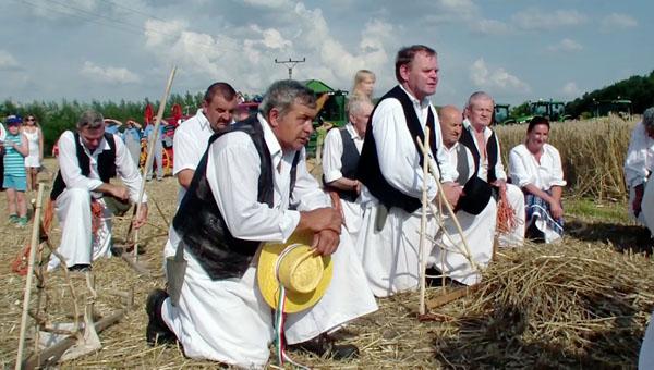 Nyékvárkonyi aratóünnep