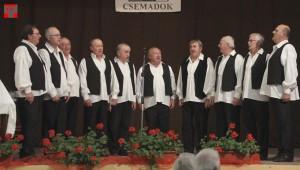 Az Alsószeli Magyar Dalkör férficsoportja