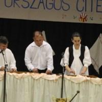 Országos citeratalálkozó – Sústya citerazenekar, Naszvad