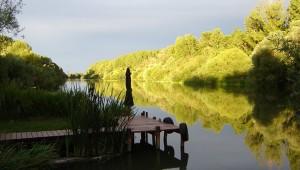 Mosoni-Duna partja Kimle