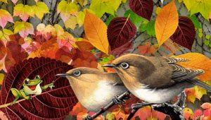 Őszi variációk