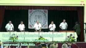 XXI. Országos Citeratalálkozó – Pannónia Citerazenekar, Balatonkenese
