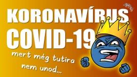 Koronavírus (COVID-19) összefoglaló