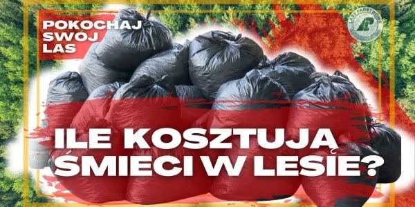 20 MILIONÓW złotych rocznie - tyle NAS kosztuję sprzątanie LASÓW. Pokochaj swój las #12