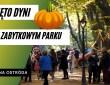 Trzy imprezy w jednym dniu. Przekazanie wozu strażackiego, oficjalne otwarcie parku i festiwal dyni.