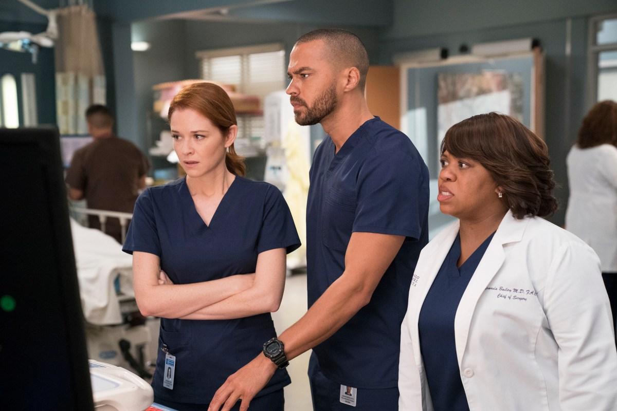 Watch Series Greys Anatomy Season 14 Episode 22 Fight 6964977