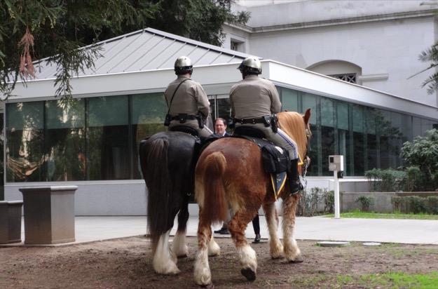 California capitol horses 625