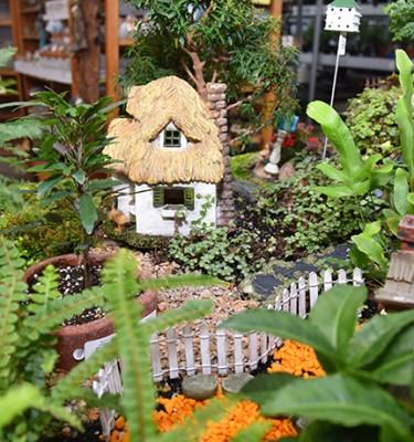 Fairy Gardens3