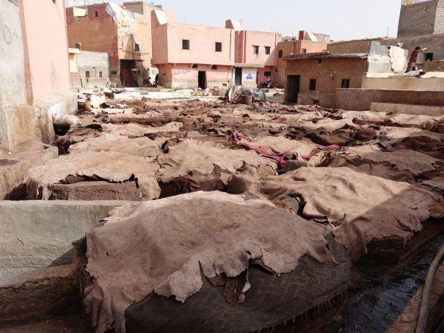 Barrio de los curtidores: Marrakech en una semana