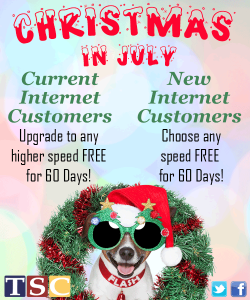 Christmas in July Vertical Ad
