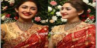 Sayyeshaa Saigal in Saree HD Photos