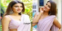 Nidhhi Agerwal Saree Photos