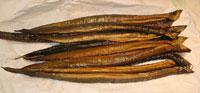 pulasa fish