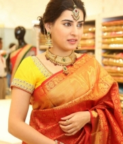 archana-beautiful-saree-photos2