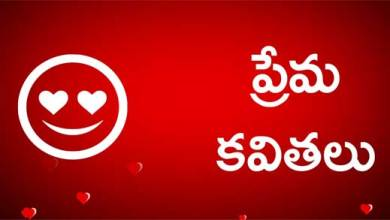 Photo of telugu love quotes