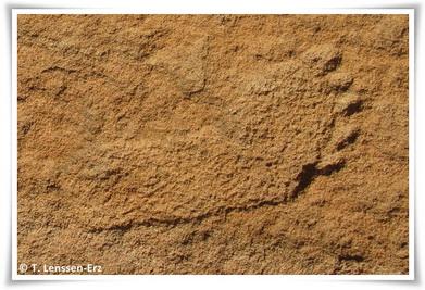 Petjada fòssil