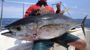 マグロ素人が「釣って食べる」まで備忘録31項目