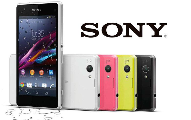 Sony cliente TEMA