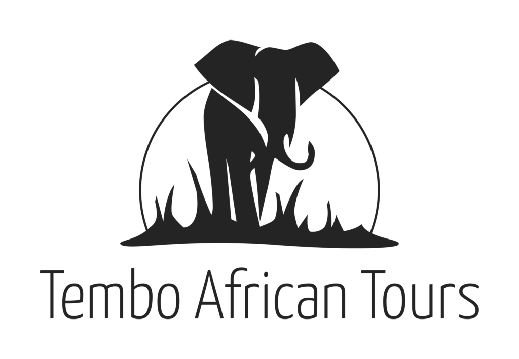 Tembo African Tours- Your guide in South Africa