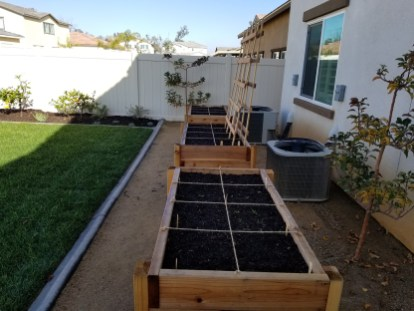 Grass and planter boxes