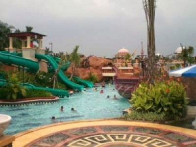 Leisure pool the jungle