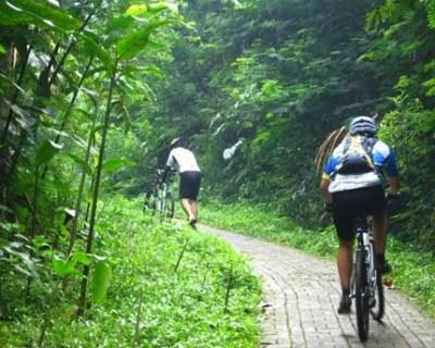 Sepeda gunung di Taman Hutan Raya Juanda