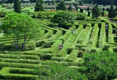 Taman Bunga Nusantara Bogor 3