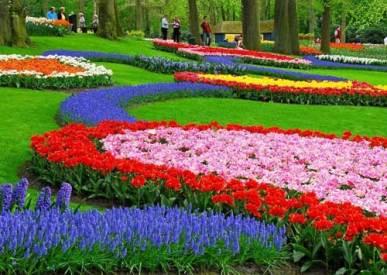 taman bunga nusantara puncak 2