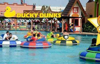 Ducky Dunks Transera