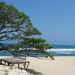 Tempat Wisata Pantai Pok Tunggal