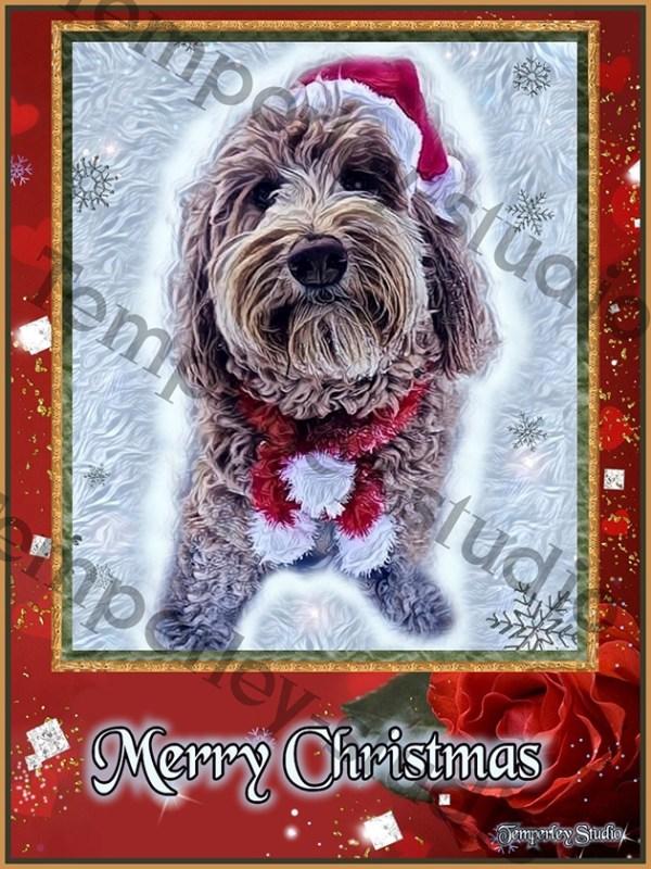 Cockerpoo dog Christmas card