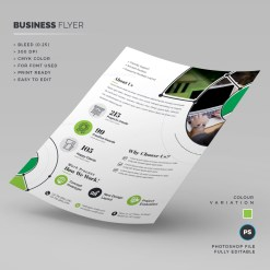 Print Ready Business Flyer Template