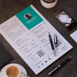 Resume Template in Multiple Formats