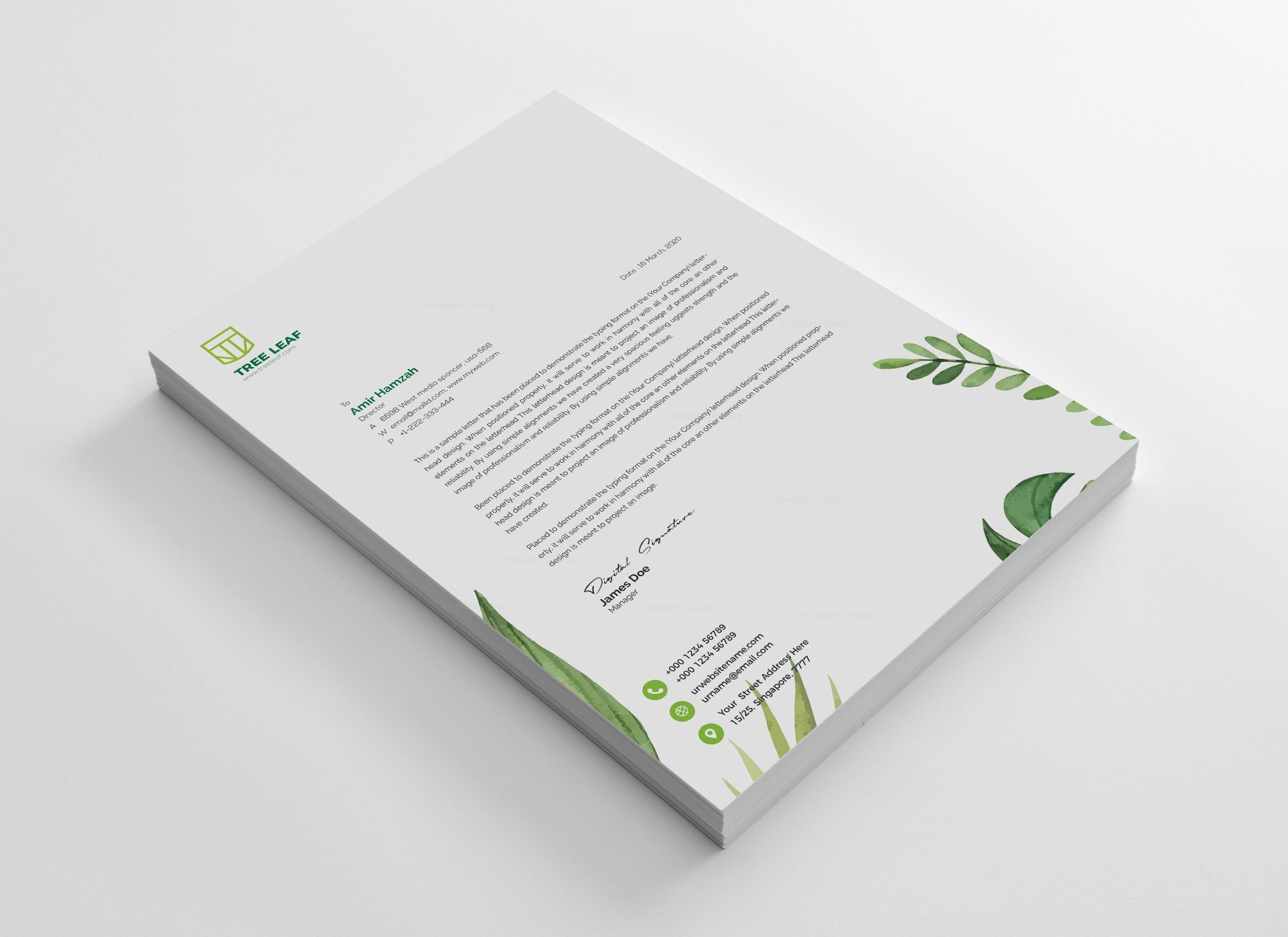 Leaf Creative Corporate Identity Design Template