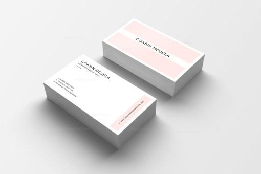2 Colors Business Card Design