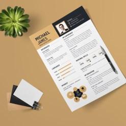 Effective Resume Design