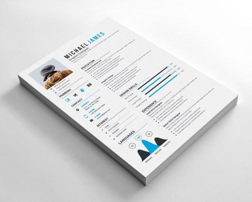 Vector Resume Design
