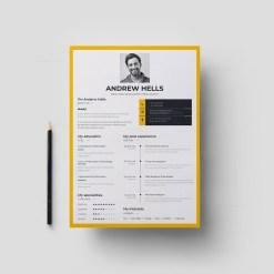A4 Modern Resume Template