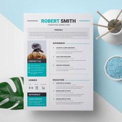 Elegant Print Resume Templates